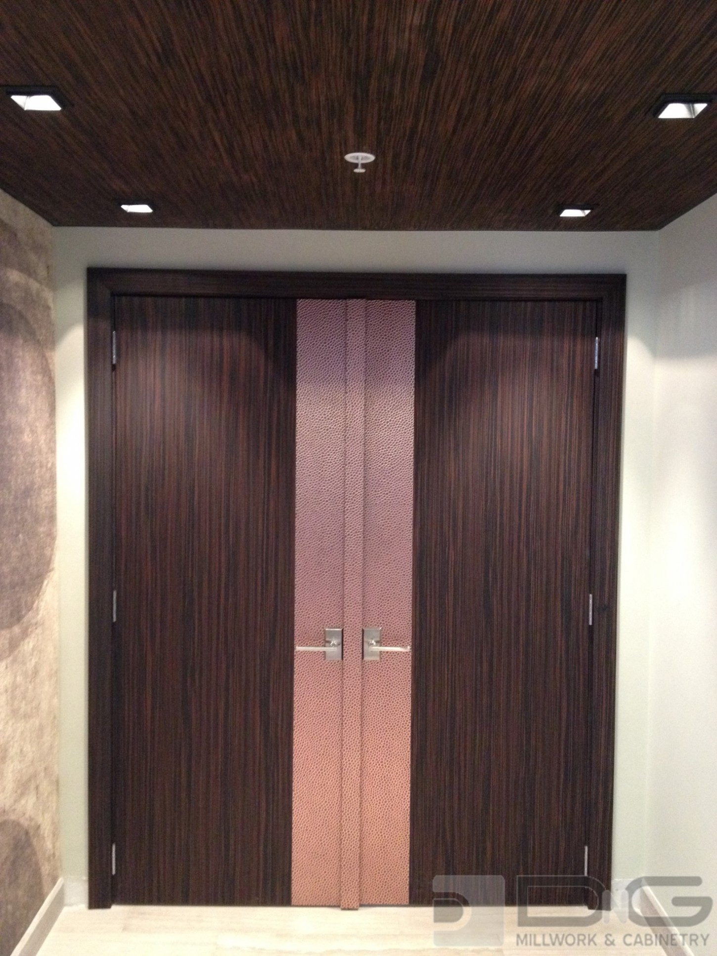 Door and Paneled Ceilings